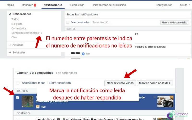 notificaciones fan page